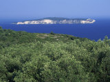 Olive Groves and the Island of Anti-Paxos Seen from Paxos, Greek Islands, Greece, Europe Photographic Print by Julia Bayne