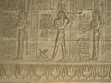 Reliefs, Temple of Hathor, Dendera, Egypt, North Africa, Africa Photographic Print by Julia Bayne