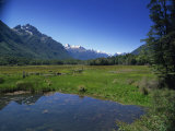 Fiordland National Park, UNESCO World Heritage Site, Otago, New Zealand, Pacific Photographic Print by Jeremy Bright
