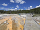 Geyser Hill, Upper Geyser Basin, Yellowstone National Park, Wyoming, USA Photographic Print by Neale Clarke
