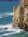 Fisherman on the Edge of the Cliff, Cape St. Vincent Peninsula, Sagres, Algarve, Portugal Photographic Print by Neale Clarke