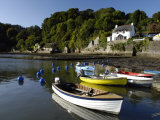 Dart Estuary at Dittisham, South Devon, England, United Kingdom, Europe Photographic Print by Rob Cousins