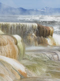 Canary Spring, Mammoth Hot Springs, Yellowstone National Park, Wyoming, USA Photographic Print by Neale Clarke