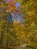 Autumn Fall Colours, Vermont Back Country Road Near West Arlington, Virginia, USA Photographic Print by Neale Clarke