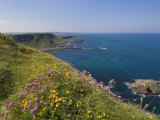 North Antrim Coast Path to the Giant's Causeway, County Antrim, Ulster, Northern Ireland, UK Photographic Print by Neale Clarke