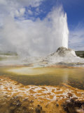 Castle Geyser Erupting, Upper Geyser Basin, Yellowstone National Park, Wyoming, USA Photographic Print by Neale Clarke