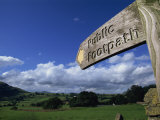 Footpath Signs, Naddle Valley, Lake District, Cumbria, England, United Kingdom, Europe Photographic Print by Neale Clarke