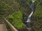 Ess-Na-Larach Waterfall, Glenariff Country Park Near Waterfoot, County Antrim, Northern Ireland Photographic Print by Neale Clarke