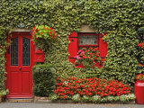 Ivy Covered Cottage, Town of Borris, County Carlow, Leinster, Republic of Ireland, Europe Photographic Print by Richard Cummins