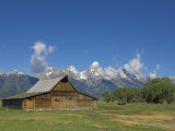 Mormon Row Barn and a Bison, Jackson Hole, Grand Teton National Park, Wyoming, USA Photographic Print by Neale Clarke