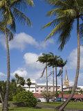 La Savane Park, Fort-De-France, Martinique, French Antilles, West Indies, Caribbean Photographic Print by Richard Cummins