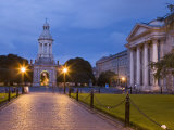 Trinity College, Early Evening, Dublin, Republic of Ireland, Europe Photographic Print by Martin Child