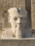 Statue of Ramesses II, Luxor Temple, Luxor, Thebes, UNESCO World Heritage Site, Egypt Photographic Print by Philip Craven