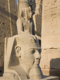 Satue of the Pharaoh Ramesses II, Luxor Temple, Luxor, Thebes, Egypt Photographic Print by Philip Craven