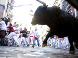 Running of the Bulls through Pamplona, Giclee Print