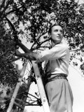 Basil Rathbone, c.1944 Prints