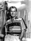 Portrait of Alan Ladd Poster