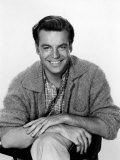 Robert Wagner, 1960 Photo