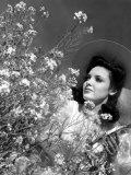 Linda Darnell, 1943 Photo