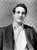 Paul Newman, c.1956 Poster