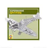 Haynes: Supermarine Spitfire Prints