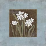 Spring Awakening I Poster von Carol Robinson