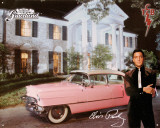 Elvis Pink Caddy Plechov cedule