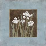 Spring Awakening II Art by Carol Robinson