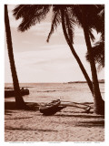 Hawaiian Outrigger Canoe Print