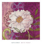 White Peony Posters by Kate Birch
