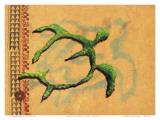 Hilihili Honu, Green Sea Turtle, Hawaiian Petroglyph Prints by Lynn Cook