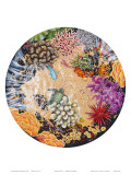 Tidepool II, Hawaiian Turtle and Coral Prints by Mark Mackay
