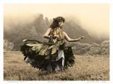 Swaying Skirt, Hawaiian Hula Dancer Kunstdrucke von Alan Houghton