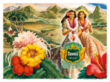 Hawaii USA Affiches par  Andre