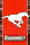 CFL - Calgary Stampeders Poster