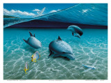 The Chase, Hawaiian Spinner Dolphins Print by Mark Mackay