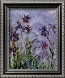 Íris Pôsters por Claude Monet