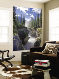 Athabasca Falls Waterfall, Jasper National Park, Alberta, Canada Wall Mural by Michele Falzone