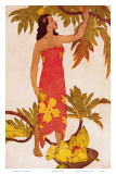 Breadfruit, Royal Hawaiian Hotel Menu Cover c.1950s Print by John Kelly