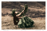Offering to Pele, Hawaiian Hula Dancer Art by Alan Houghton