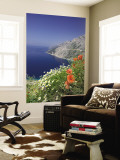 Dalmatian Coast, Croatia Wall Mural by Russell Young