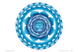 Water Spiral, Hawaiian Humpback Whale Mandala Prints by Jozef Smit