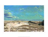 American Sands Print by Doug Zider
