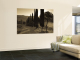 Country Road Towards Pienza, Val D' Orcia, Tuscany, Italy Wall Mural by Doug Pearson