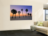 Clearwater Beach, Florida, USA Wall Mural by John Coletti