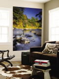 Swift River, White Mountain National Park, New Hampshire, USA Wall Mural by Alan Copson