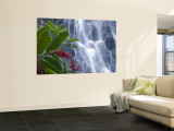 Kepirohi Waterfall, Pohnpei, Federated States of Micronesia Wall Mural by Michele Falzone