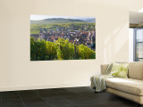 Old Wine Town of Riquewihr and Vineyard, Alsace, France Wall Mural by Peter Adams