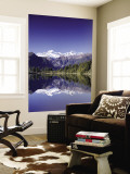 Lake Matheson and Mt.Cook, South Island, New Zealand Wall Mural by Steve Vidler