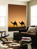 Camels Near the Pyramids at Giza, Cairo, Egypt Wall Mural by Doug Pearson